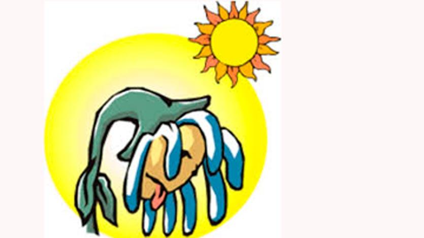 Anuncian en Camagüey calor, chubascos y tormentas eléctricas