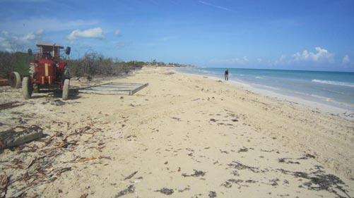 Playa larga Iberostar Mojito