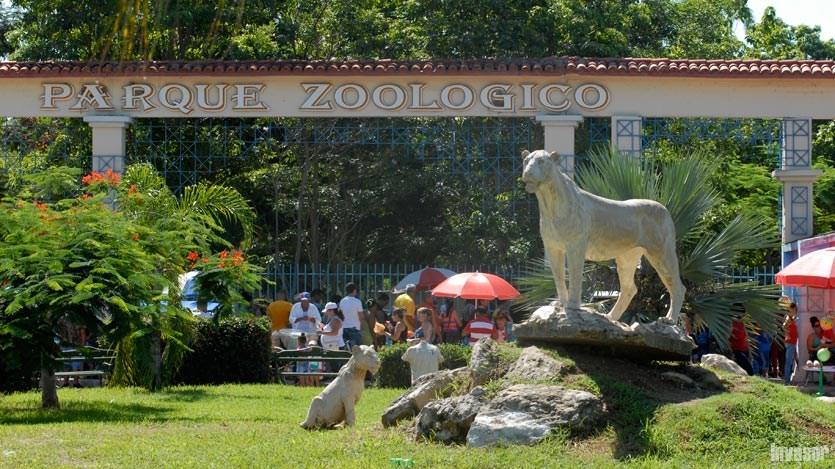 Zoológico de Ciego de Ávila también veranea (+Post)